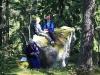 utedag-bar-och-svamp-20110909-032_1200x800